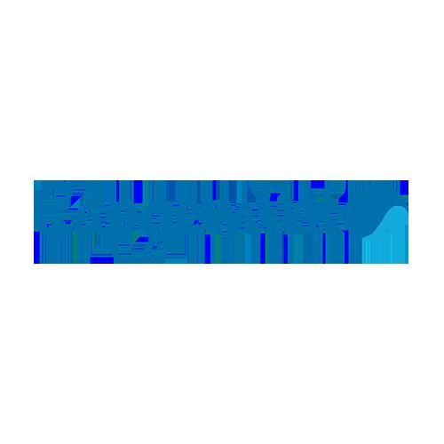 LP-logo-capgemini